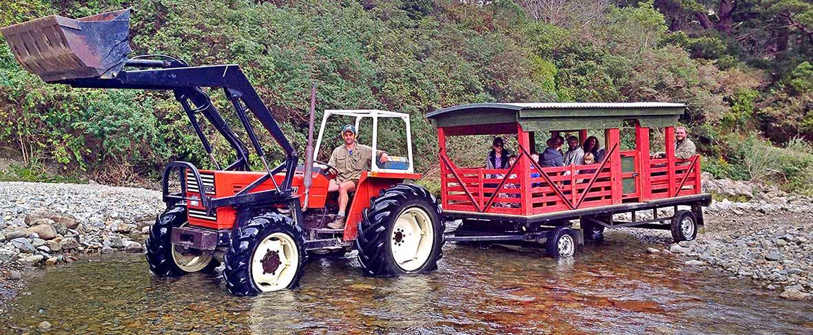 Staglands Tractor Rides