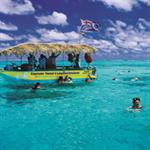 Raro - Cruise