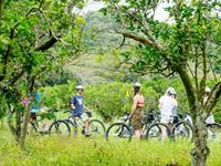 Explore - Bicycle Tour