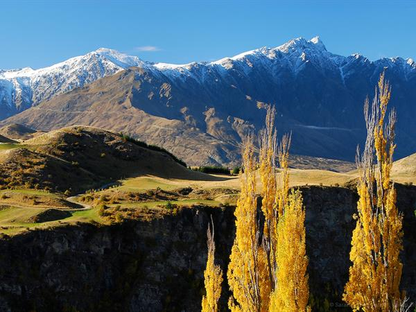 How to Call in Sick and Stow Away to Queenstown