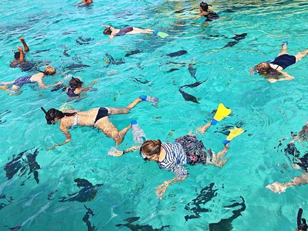 Lagoon Cruises