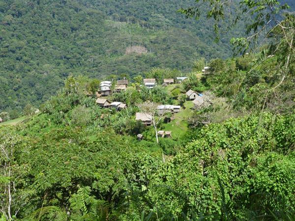 Kokoda Trekking Ltd
