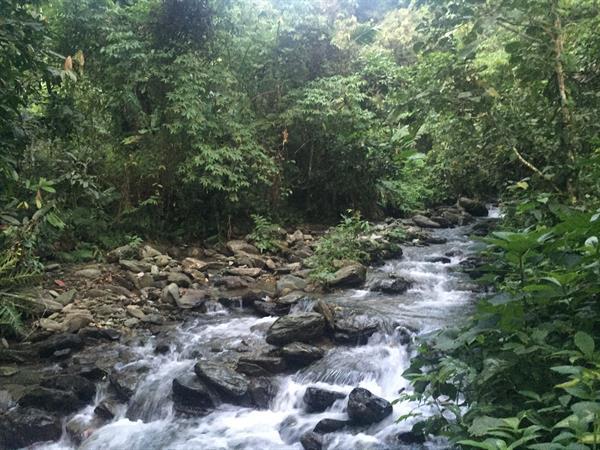 Imofat Trekking & Tourism