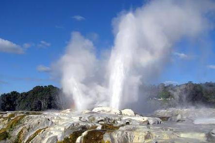 Rotorua -TEPUIA Geothermal & Maori Cultural Highlights NZ Shore Excursions