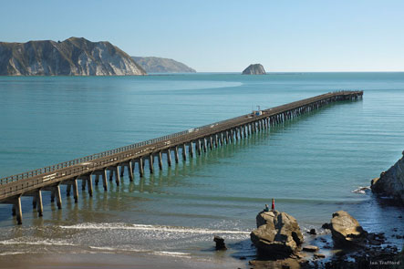 NZ Shore Excursions
