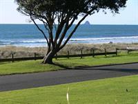 Beach Front Non Powered Sites Oakura Beach Holiday Park