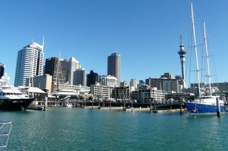 Auckland Discovery Tour NZ Shore Excursions