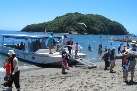Matakana Escape Tour
