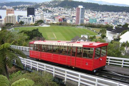Wellington - City Tour