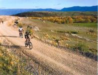 NZ Cycle Trail Guide - 100% Pure NZ
