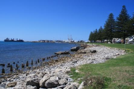 Napier - Highlights Tour No 8 Tours for NZ Shore Excursions