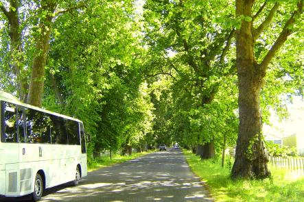 Napier - Highlights Tour NZ Shore Excursions