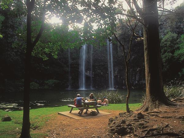 Whangarei Falls Discovery Settlers Hotel Whangarei