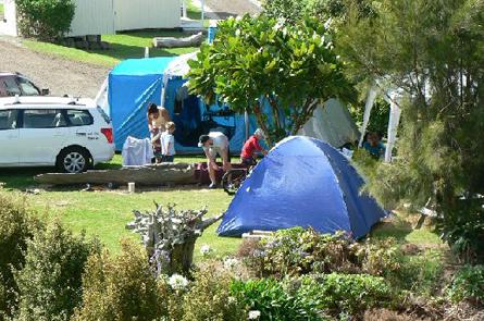 Tent Sites Matakohe Holiday Park