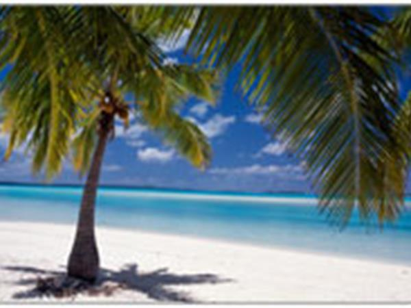 Tourism Papua New Guinea select RéserveGroup's évoSuite enterprise™ and CRM