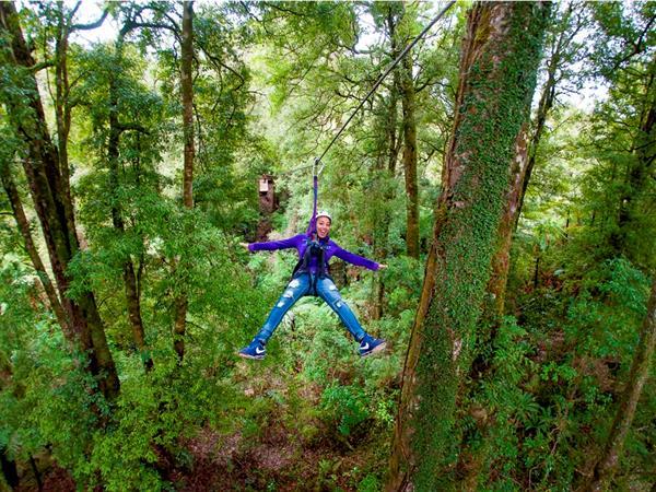 Rotorua Canopy Tours Distinction Rotorua Hotel & Conference Centre