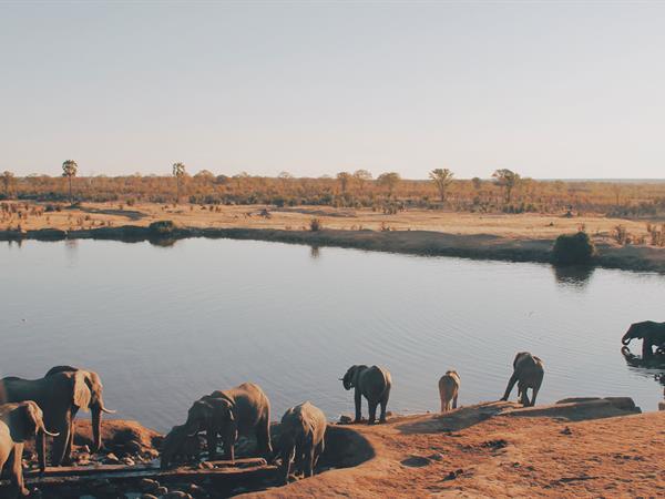 Zimbabwean Walking and Paddling Safari PNG Trekking Adventures - Zimbabwe