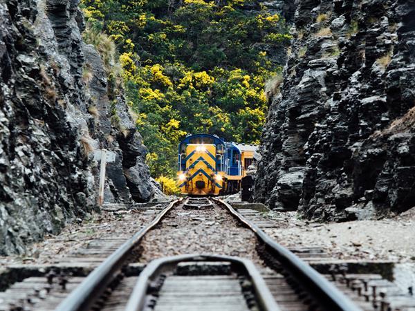 Dunedin Railways Distinction Dunedin Hotel
