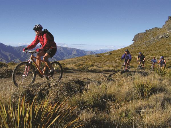 Wanaka Mountain Biking Distinction Wanaka Alpine Resort
